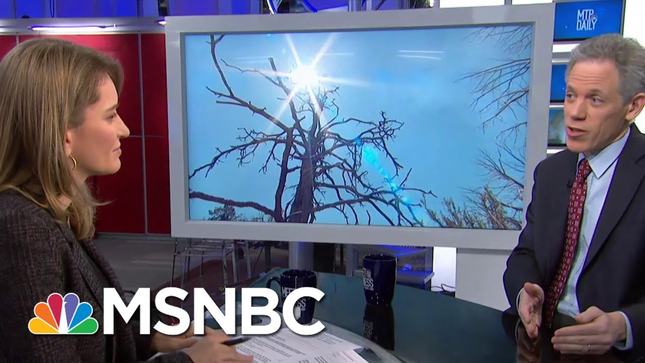 U.N. Calls Climate Outlook 'Bleak' In New Report | MTP Daily | MSNBC 8