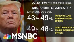 New Polls Show 49% Believe Trump Should Be Impeached, Removed | MSNBC 3