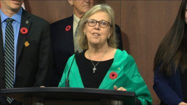 Elizabeth May steps down as Green Party leader, interim replacement announced 2