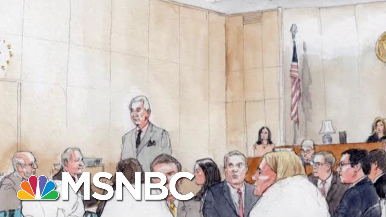 Why Roger Stone Abruptly Left His Criminal Trial | The Beat With Ari Melber | MSNBC 8