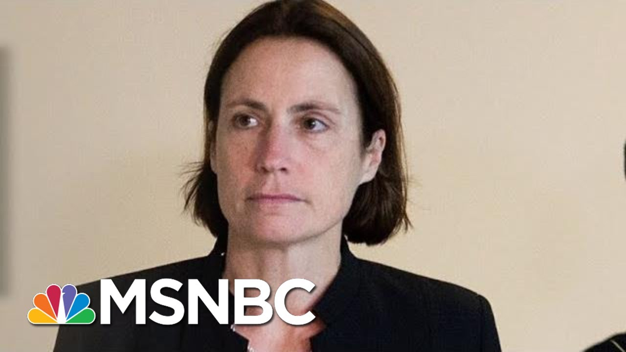 Witness Paints Trump Scheme, Russian Threat In Vivid Detail | Rachel Maddow | MSNBC 2