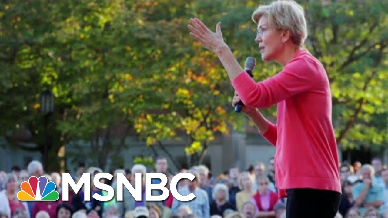 Elizabeth Warren Blasts Billionaires In New Ad | Velshi & Ruhle | MSNBC 5