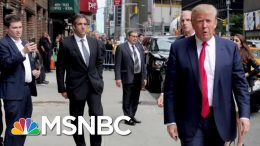 Trump Announces He's Leaving New York, And New Yorkers Seem Fine With It | Deadline | MSNBC 1