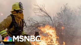 Climate Warning: California Continues To Burn, Data Estimates Of Global Flooding | MTP Daily | MSNBC 1