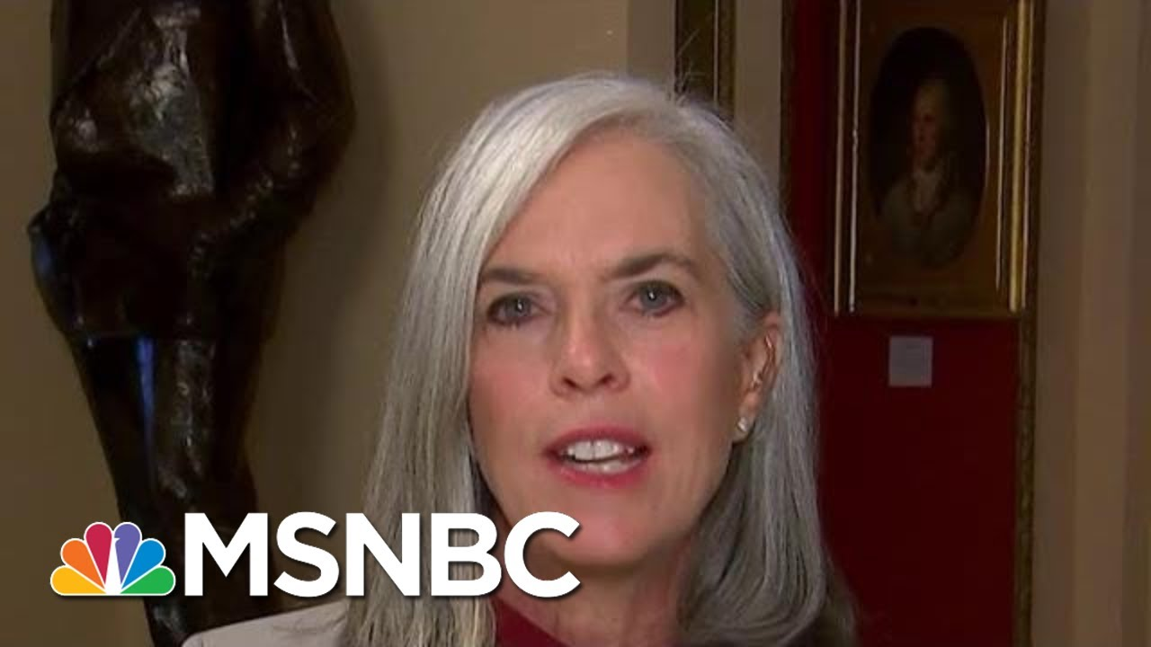 'The Facts We've Heard Are Alarming,' Says House Dem | Morning Joe | MSNBC 6