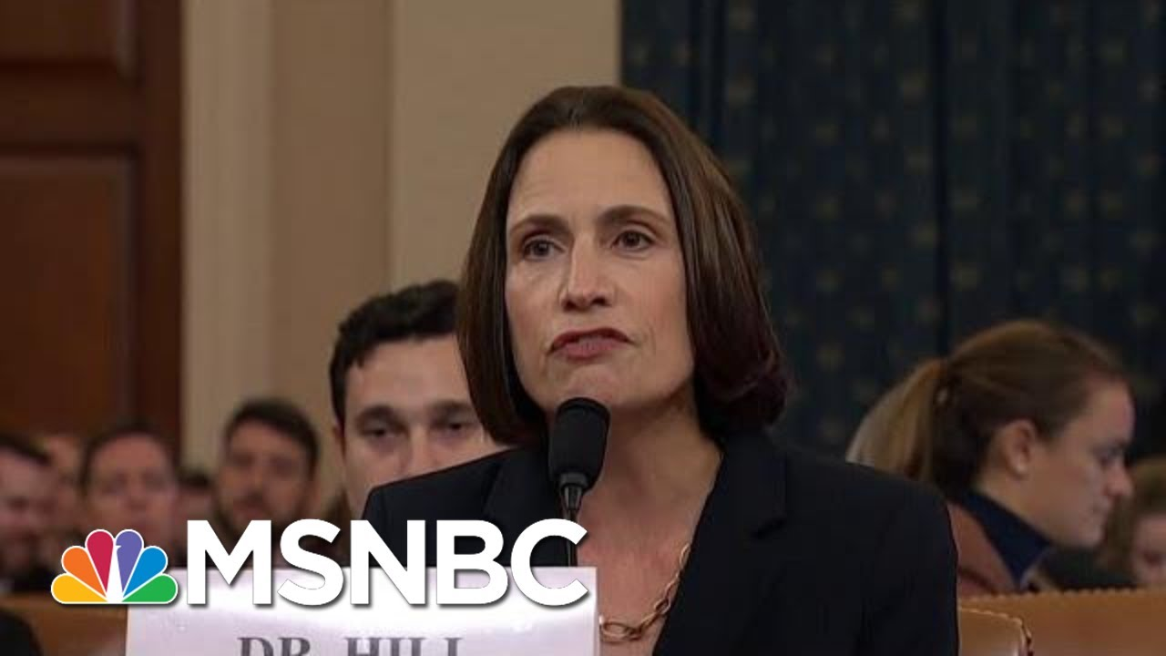 Wallace: Fiona Hill Laid Bare 'Domestic Political Errand' By President Trump | Deadline | MSNBC 4