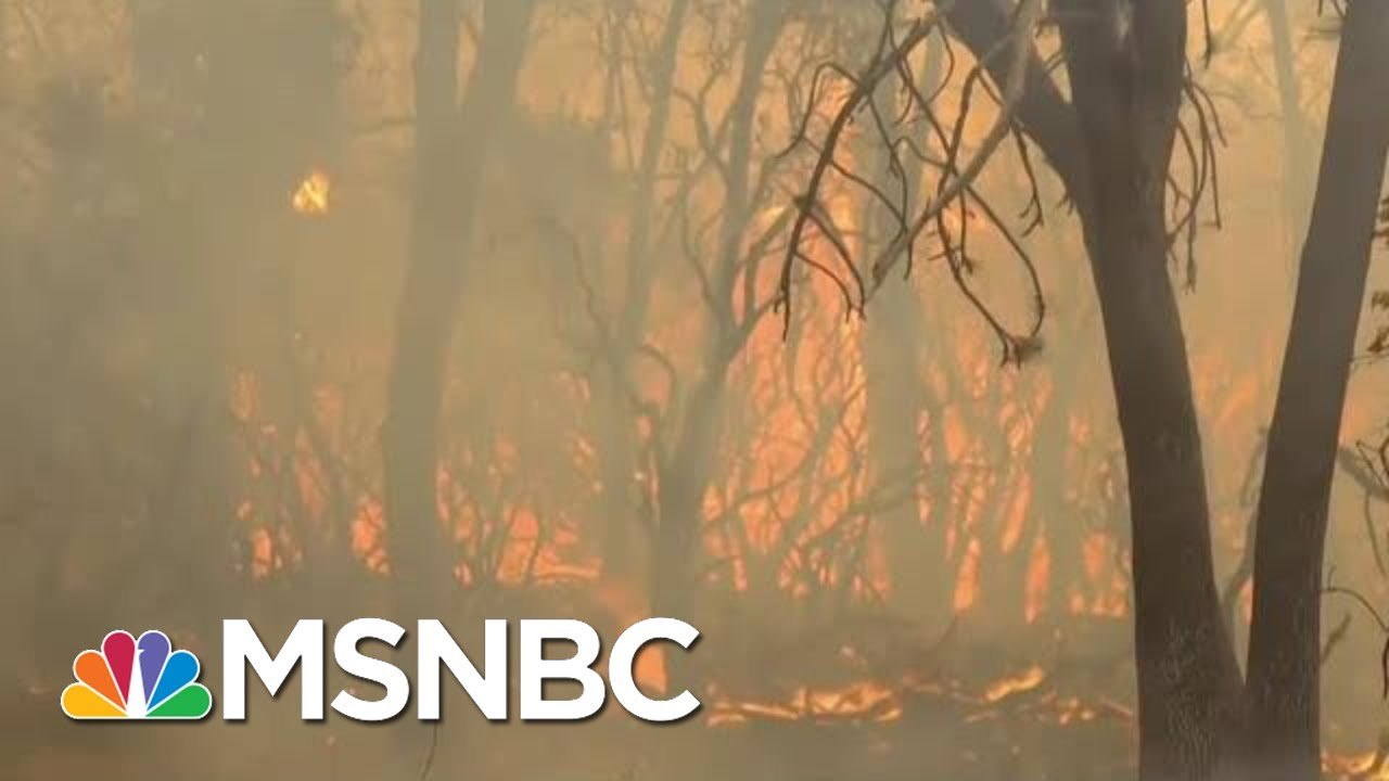 What Changes Need To Happen Now For Climate Change | Velshi & Ruhle | MSNBC 6