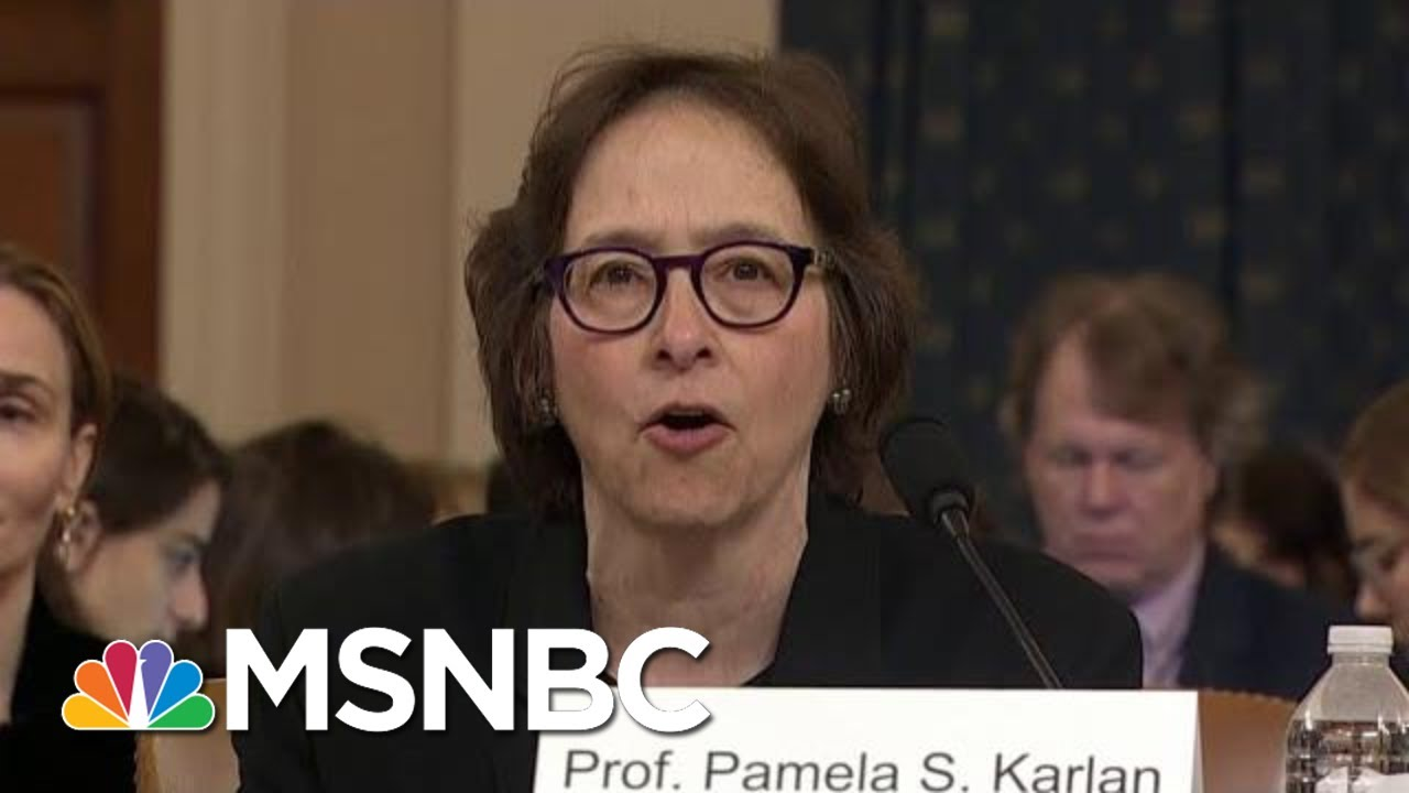 Constitutional Scholars Say Trump Committed Several Impeachable Offenses | Hardball | MSNBC 8