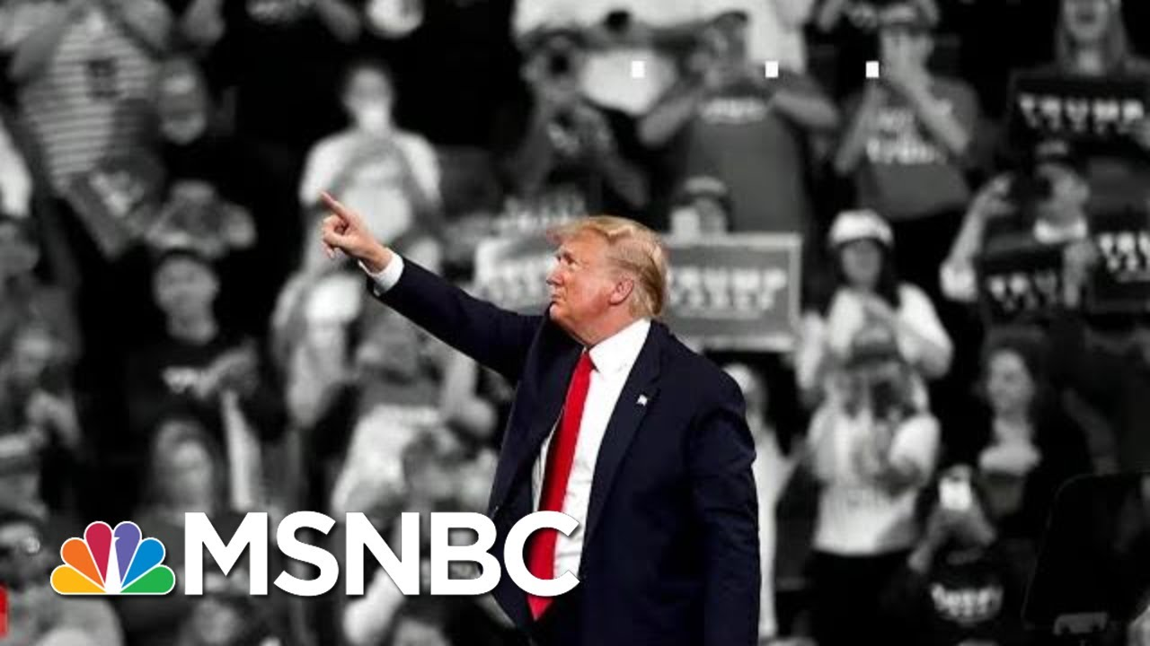 Trump Supporters: 'Ridiculous And Stupid' Impeachment Is A 'Waste Of Time' | The 11th Hour | MSNBC 9
