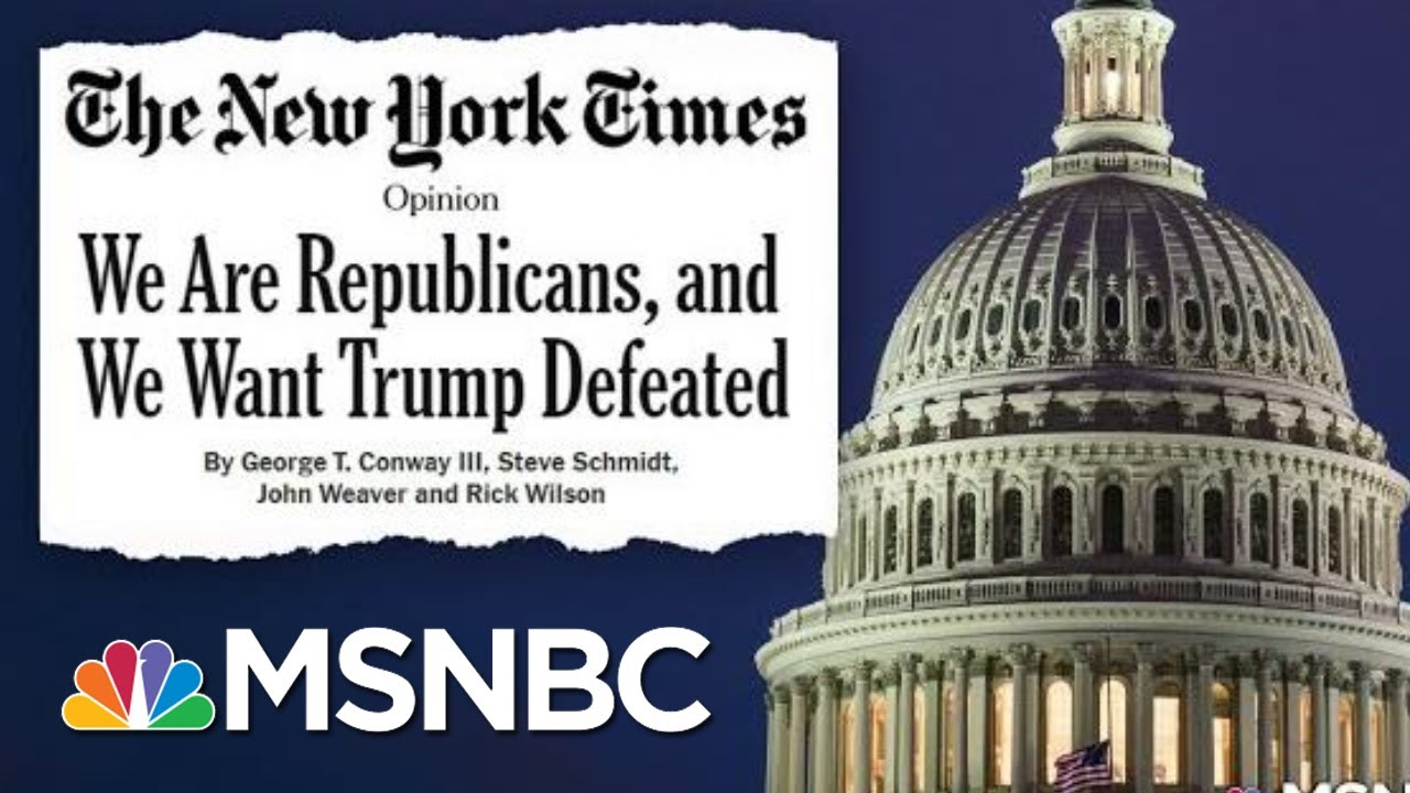 Republican Strategists Using Their Methods To Defeat The Republican President | Deadline | MSNBC 8