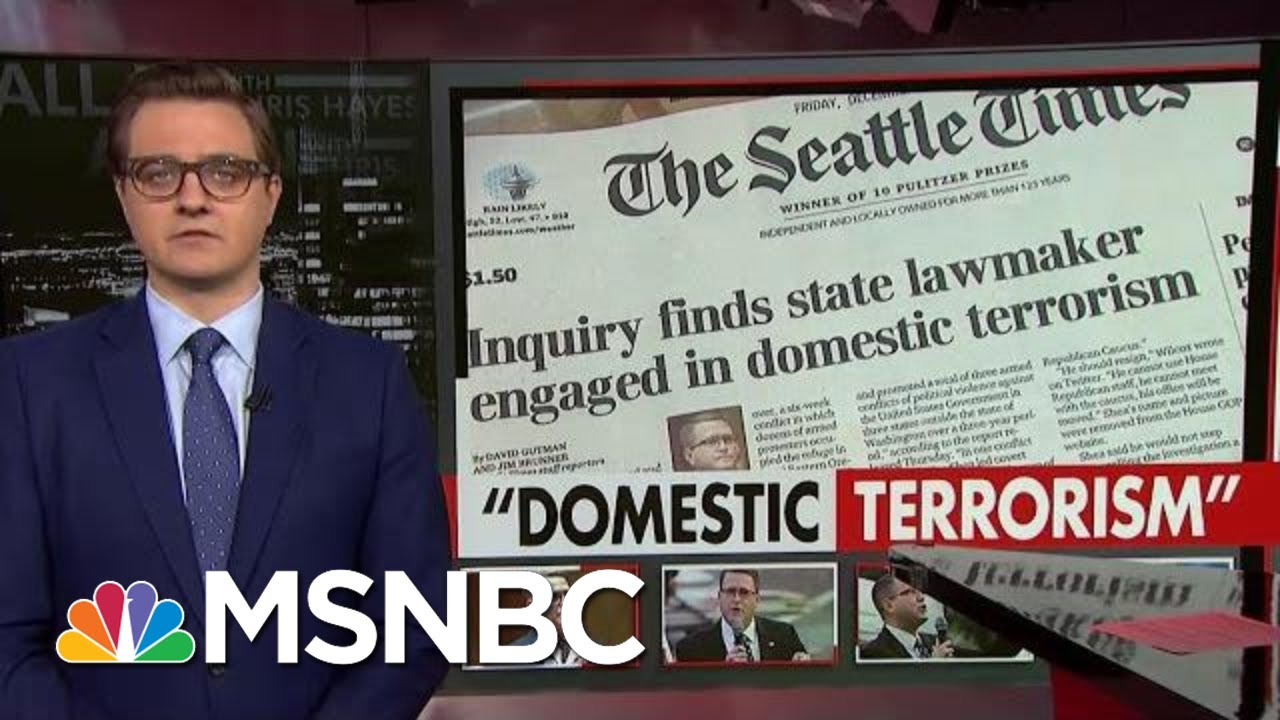 Washington State Lawmaker Engaged In 'Domestic Terrorism:' Inquiry | All In | MSNBC 10