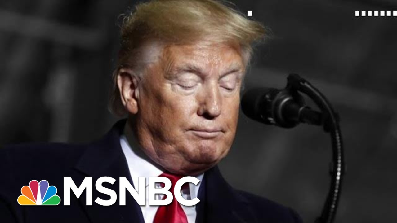 Language Expert: Trump Is A Truly Inferior Person To Be Leading A Nation | The 11th Hour | MSNBC 7
