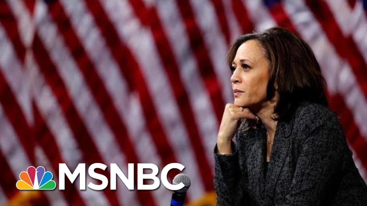Kamala Harris Drops Out Of 2020 Presidential Race | Velshi & Ruhle | MSNBC 13