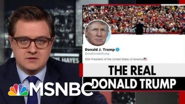 President Donald Trump's Strange Habit Of Retweeting Obscure Accounts | All In | MSNBC 6