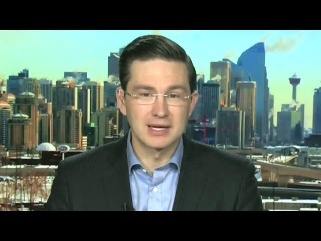 Poilievre: 'We need a leader who can stand up, fight back and win' 10