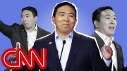 Andrew Yang's remarkable rise 3