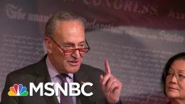Sen. Chuck Schumer Calls Alan Dershowitz's Impeachment Logic 'A Load Of Nonsense'   MSNBC 5
