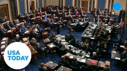Senate defeats motion to call witnesses in Donald Trump's impeachment trial | USA TODAY 6