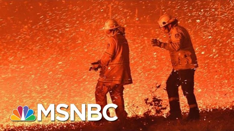 Devastating Wildfires Continue To Ravage Australia   The 11th Hour   MSNBC 1