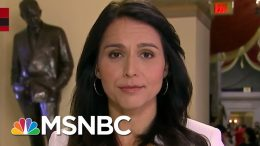Tulsi Gabbard On Conflict With Iran: 'We've Got To Choose Diplomacy'   Katy Tur   MSNBC 7