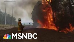 Expert Says Australia Fires Direct 'Impact Of Human Caused Climate Change' | The Last Word | MSNBC 4
