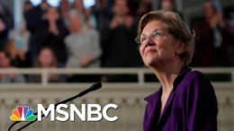 Sanders And Warrens Statistically Tied In Iowa | Morning Joe | MSNBC 8