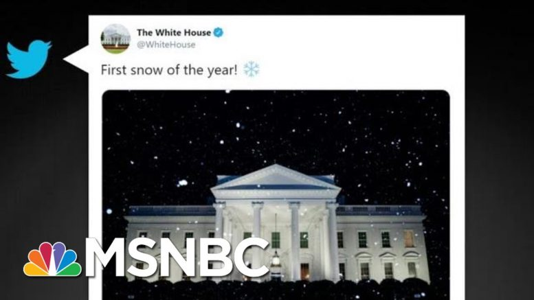 Climate Change-Denying White House Tweets About Snow When It's 70 Degrees | All In | MSNBC 1