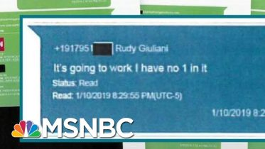 Lev Parnas: Trump Helped Push For Visa For Former Ukraine Official | Rachel Maddow | MSNBC 6