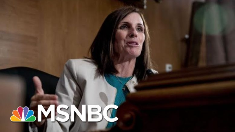 GOP Sen. McSally Is Fundraising Off Calling Hill Reporter A 'Liberal Hack' | The 11th Hour | MSNBC 1