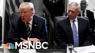 Trump Reportedly Called Generals 'Dopes And Babies' While Berating Them | The 11th Hour | MSNBC 9