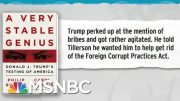 Trump Sought To Get Rid Of Foreign Corrupt Practices Act: Book | Rachel Maddow | MSNBC 5