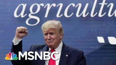 Majority Says Senate Should Vote To Convict, Remove President Donald Trump | Morning Joe | MSNBC 6