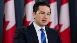 Pierre Poilievre announces he won't make Conservative leadership run 8