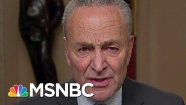 Chuck Schumer Praises Adam Schiff For Holding GOP Rapt, Convincing Public | Rachel Maddow | MSNBC 6