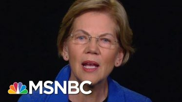 Elizabeth Warren On Trump Administration: Corruption. No Other Word For It. | Rachel Maddow | MSNBC 6