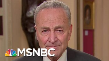 Chuck Schumer: Republicans Were Fixated On Schiff During Powerful Close | The 11th Hour | MSNBC 6