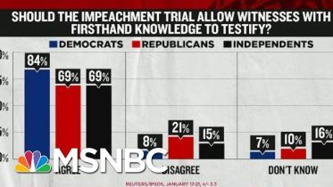 Polls Show Americans Want To Hear From Impeachment Witnesses | Rachel Maddow | MSNBC 6