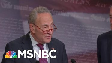 Chuck Schumer: Republicans 'Don't Want To Hear The True Facts' During Impeachment | MSNBC 2