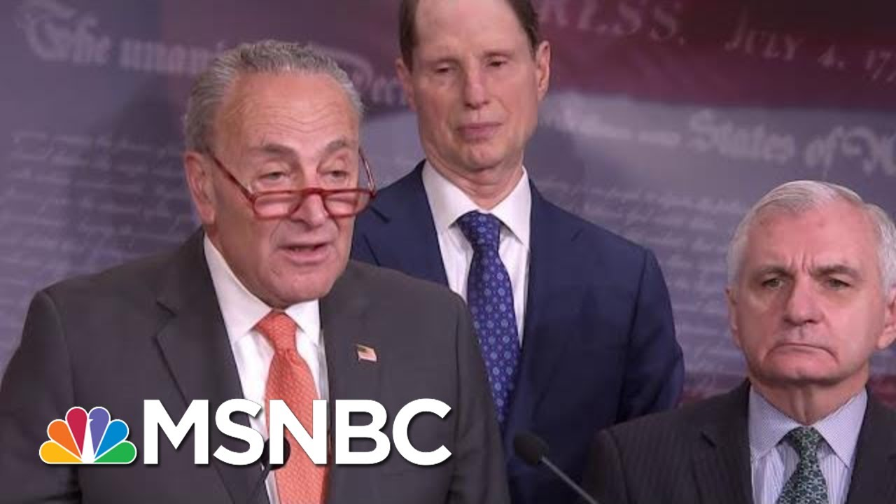 Chuck Schumer: Hunter Biden Can Tell Us 'Nothing' About President Donald Trump's Conduct   MSNBC 5