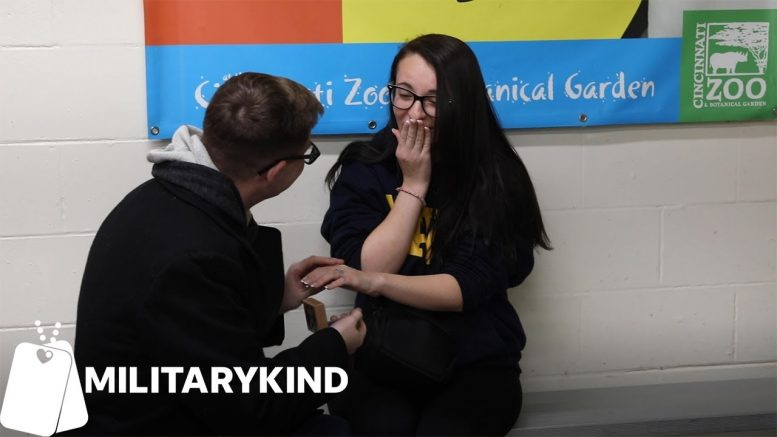 Penguins help sailor propose to unsuspecting girlfriend | Militarykind 1