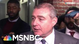 Lev Parnas: 'Trumpworld Is Like A Cult, And A Lot Of These Senators Are In The Cult' | MSNBC 7