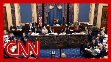 The question key GOP senators asked Trump's legal team 6