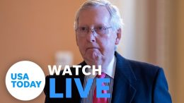 President Donald Trump's impeachment trial continues Wednesday (LIVE)   USA TODAY 6