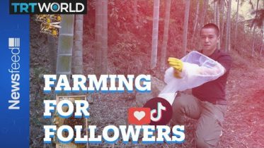 One Chinese farmer show's influencers how it should be done 6