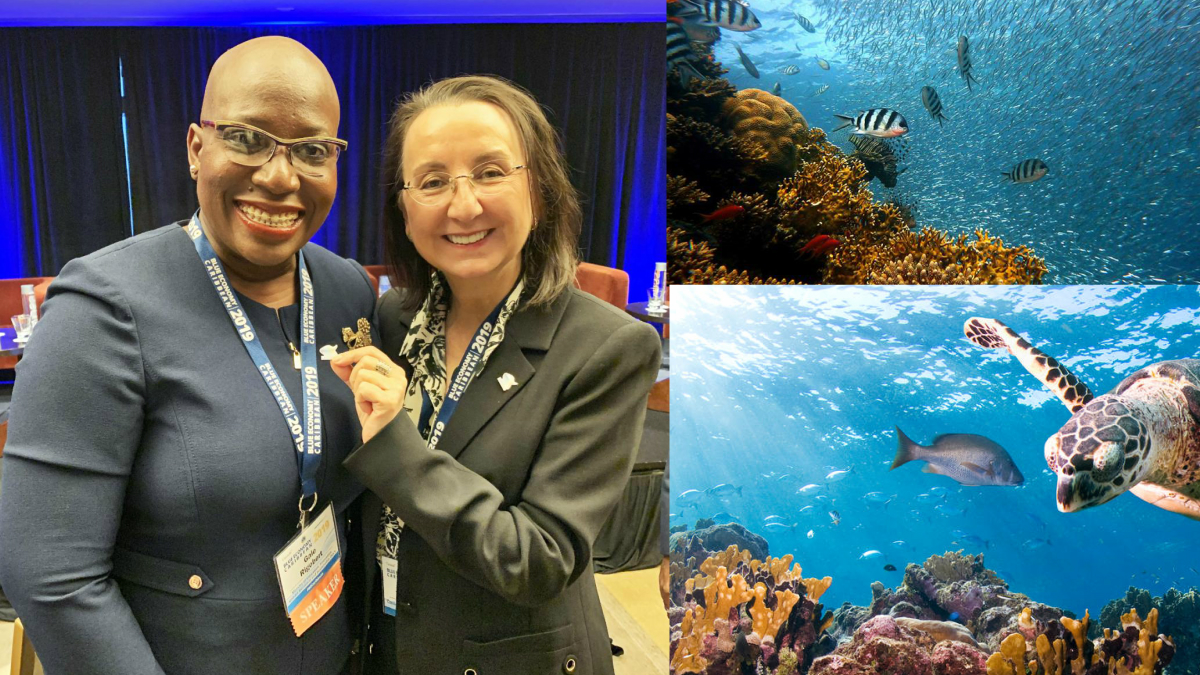 MORE ACTION AND FUNDING NEEDED TO PROTECT CARIBBEAN COASTS AND MARINE AREAS