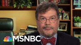 Dr. Peter Hotez Explains The Trajectory Of The Coronavirus In The U.S. | All In | MSNBC 1