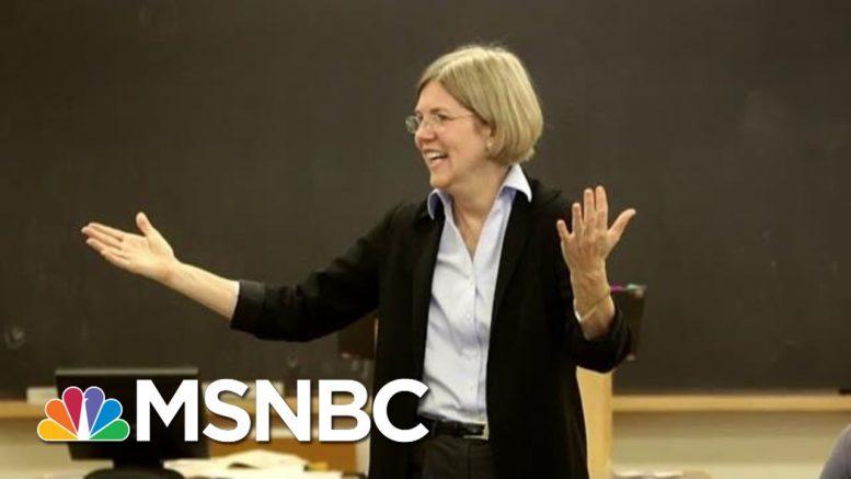 Sen. Elizabeth Warren Rides Populist Wave With 'Burning Toaster' Approach To Wall Street | MSNBC 1