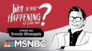 Chris Hayes Podcast With Brenda Wineapple | Why Is This Happening? - Ep 62 | MSNBC 4