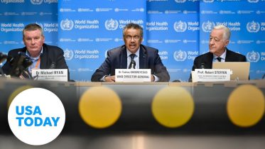 WHO gives briefing on coronavirus outbreak   USA TODAY 6