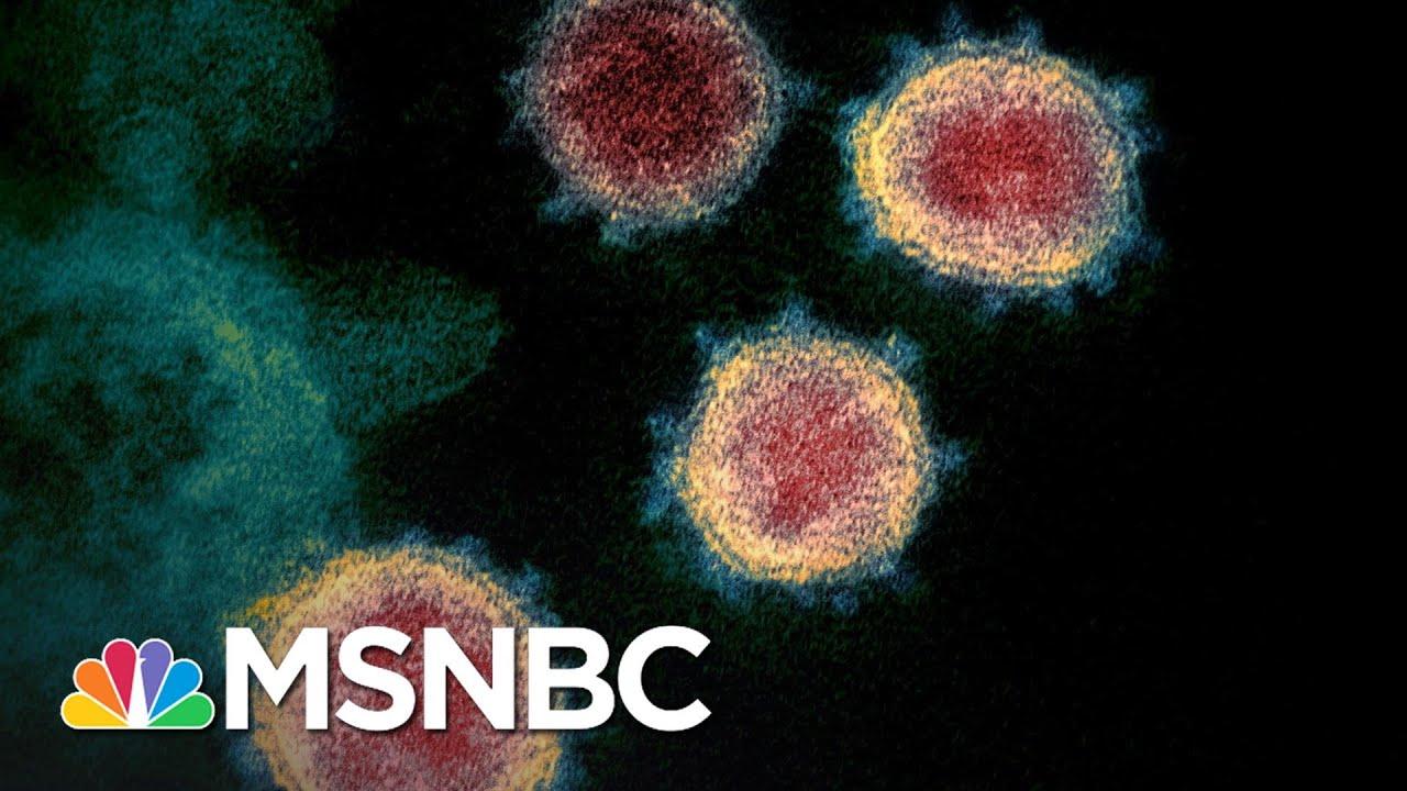 First U.S. Coronavirus Death Confirmed In Washington State | MSNBC 6